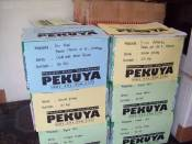 Toko Kue Enak Surabaya - 081.331.456.174
